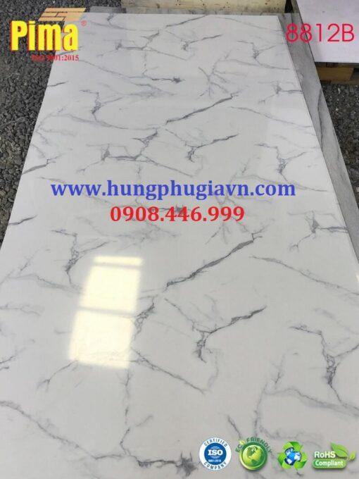 Tấm Nhựa Vân Đá PVC 8812B